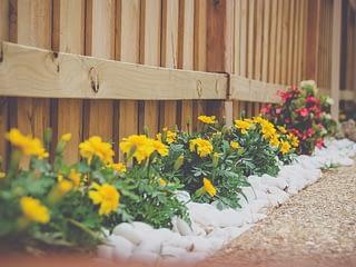 5 Low Maintenance Garden Ideas